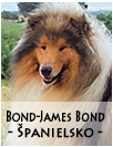 studdogs Bon James Bond sk